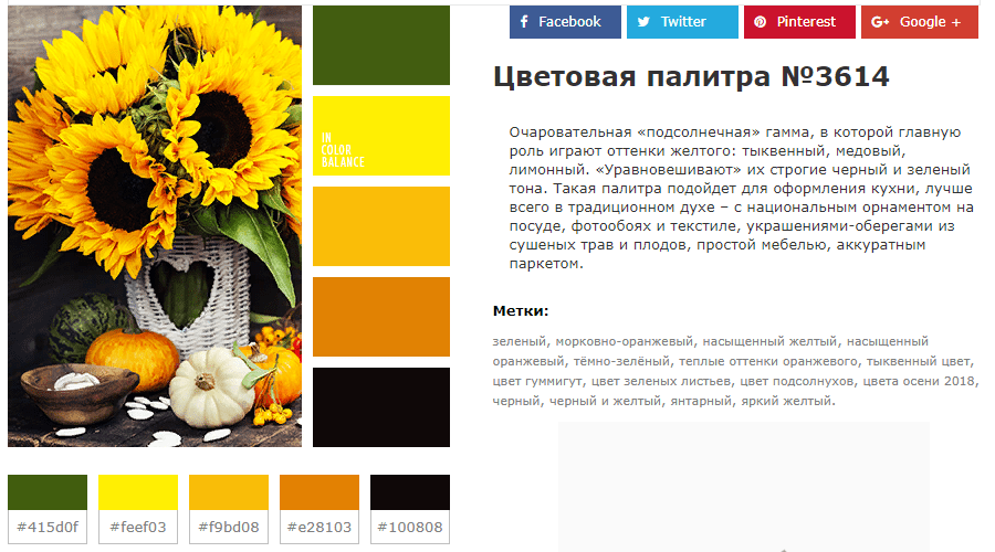 готовые цветовые схемы для сайта и дизайна